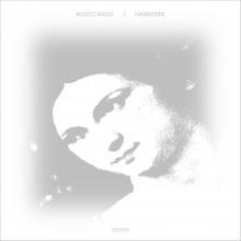 Musiccargo - Harmonie
