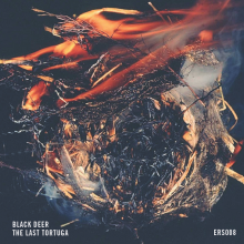 ERS008 - Black Deer - Front Cover